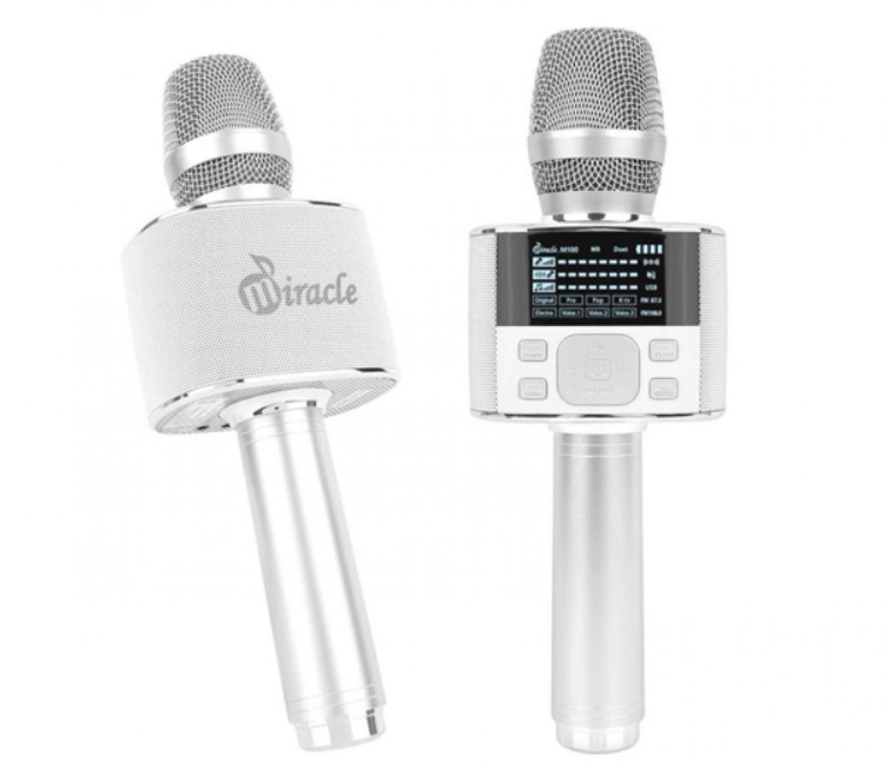 Micro Karaoke Miracle M100