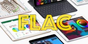 Gói Nhạc Flac 64G